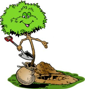 2 et 3 mars : Venez planter des arbres à St Médard