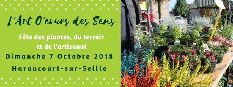 07/10 Fête des Plantes à Haraucourt-sur-Seille