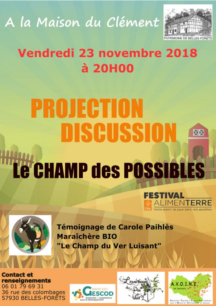 23 Novembre 20h - Projection / Discussion